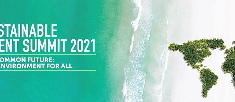 Teri World Sustainable Development Summit 2021 Banner