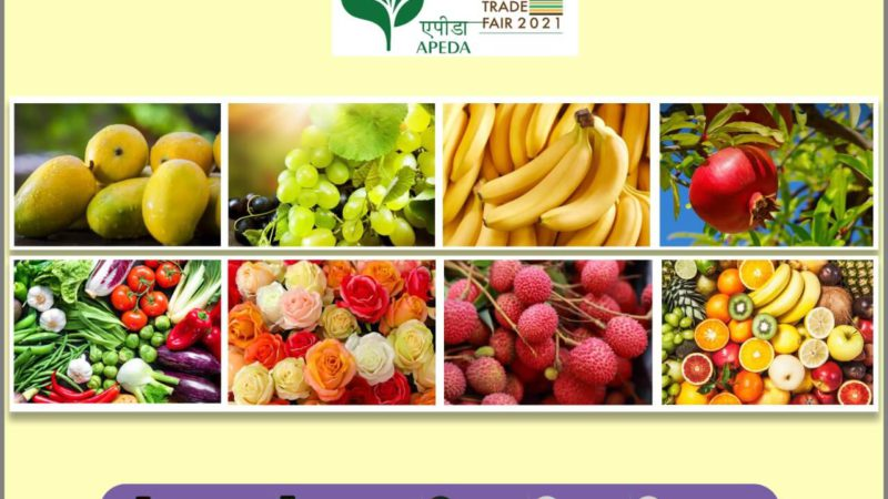 Virtual Trade Fair for horticultural produce by APEDA