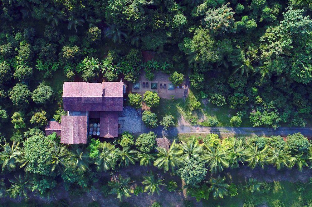 Featured Image Arwa Farms Dahanu Maharashtra