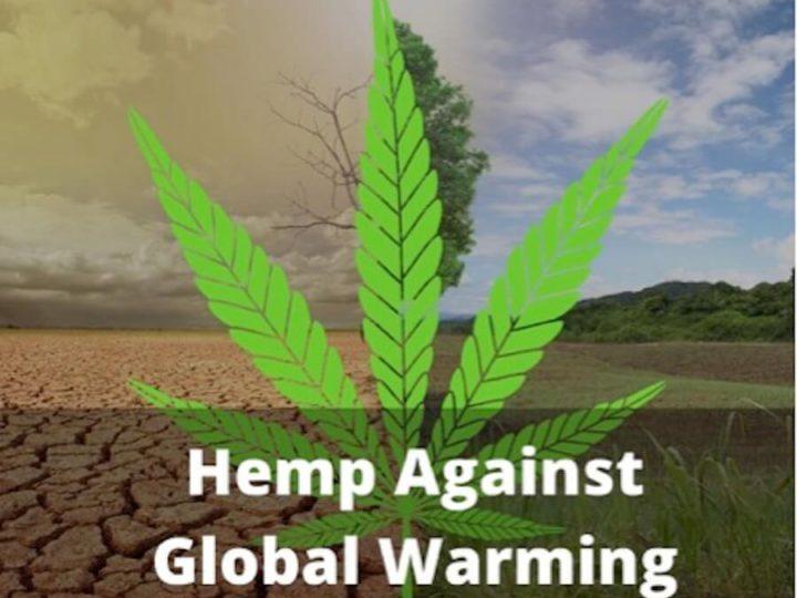 How Hemp can Help us fight Global Warming