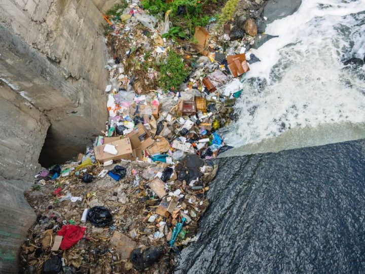 6 Aspiring Waste Management Companies in India to look forward to in 2022