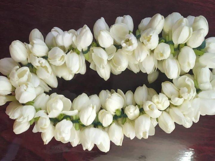 GI certified Madurai Malli flowers exported to USA & Dubai from Tamil Nadu