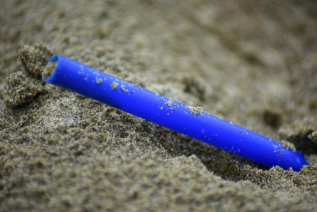5 Alternatives to Plastic Straws