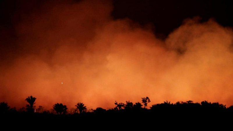 Amazon Rainforest Fires 2019