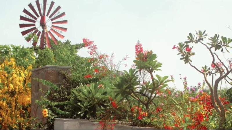 Snehal Patel Eco Home in surat gujarat