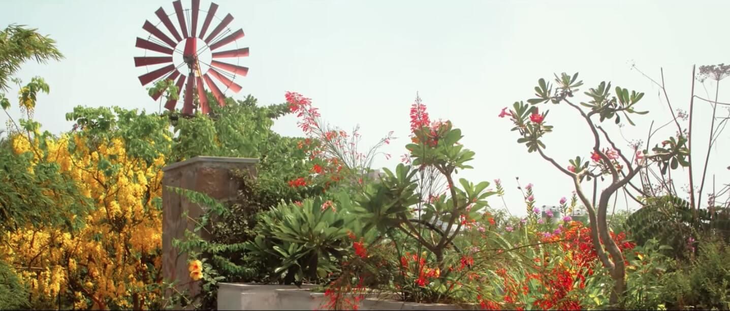 Eco-Home in Surat by Snehal Patel