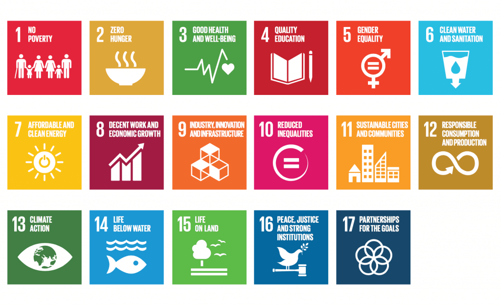 Sustainable Development Goals SDG (1)