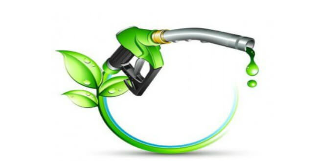 Environment Clearance to IOCL to set up new 2G Ethanol plant at Panipat